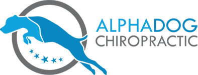 Chiropractor for Dogs, horses and people - Alphadog Chiropractic